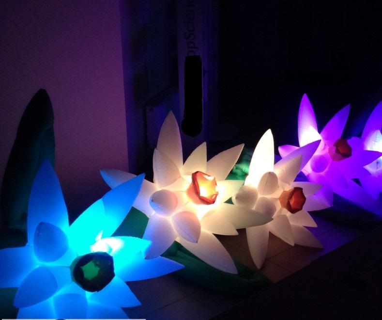 Надувные гирлянды и цветы Inflatable lanterns and apartments Цена за 1 м (4)