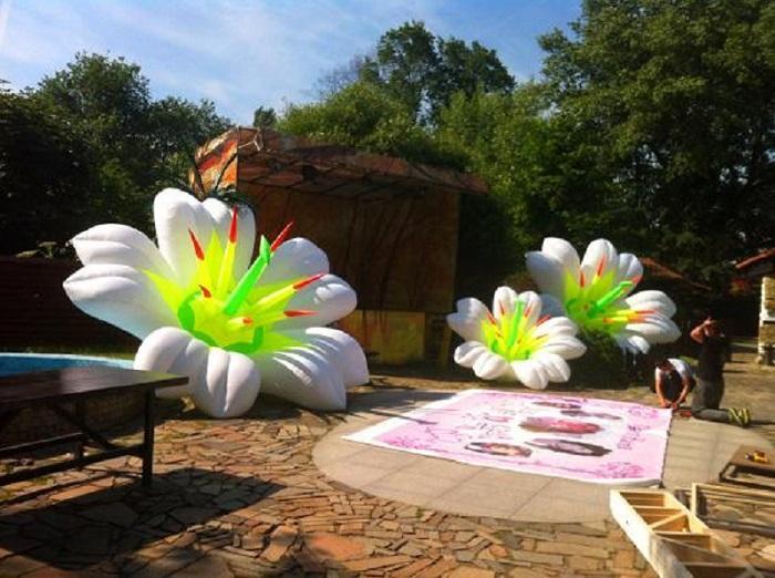 Надувные гирлянды и цветы Inflatable lanterns and apartments Цена за 1 м (3)