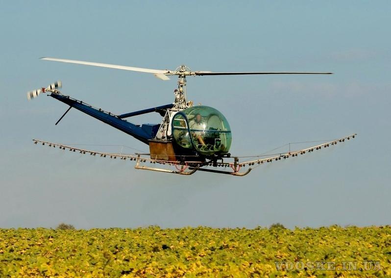 Агрохимические услуги: десикация подсолнечника сои квадрокоптером вертолетом агродроном дельтапланом (2)