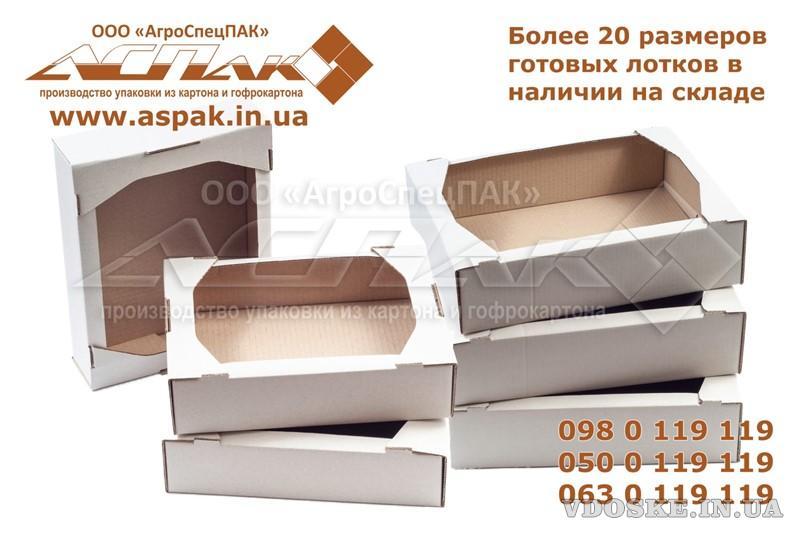 Кондитерские лотки оптом от производителя. Коробки для пряников. Упаковка для кондитерских изделий. (2)