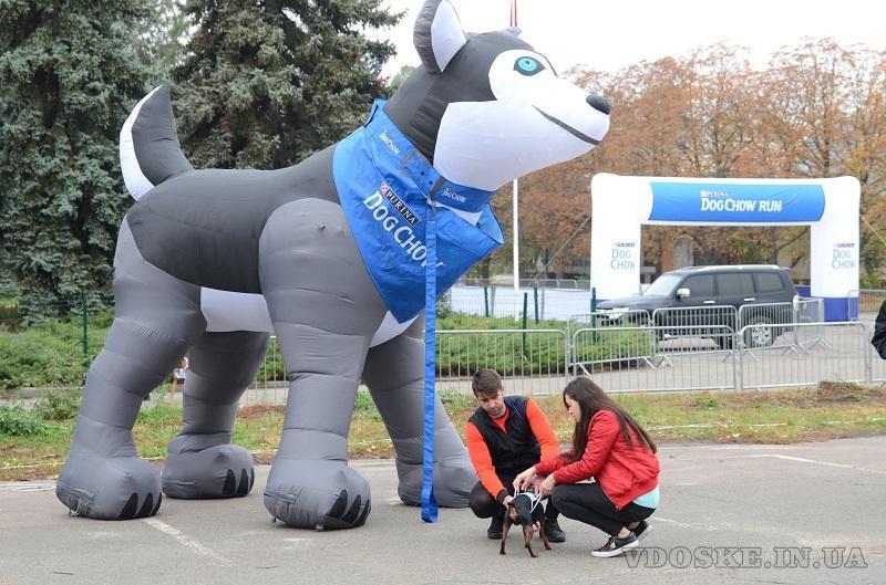 Inflatable animals Надувные фигуры животных (6)