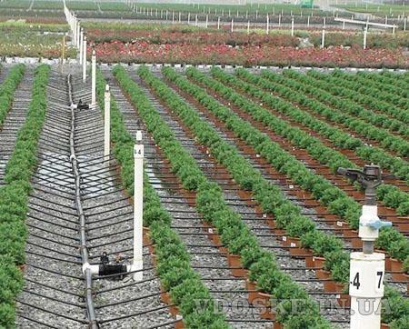 Агро центр B&SProduct предлагает || Купить капельное орошение и фурнитуру (2)