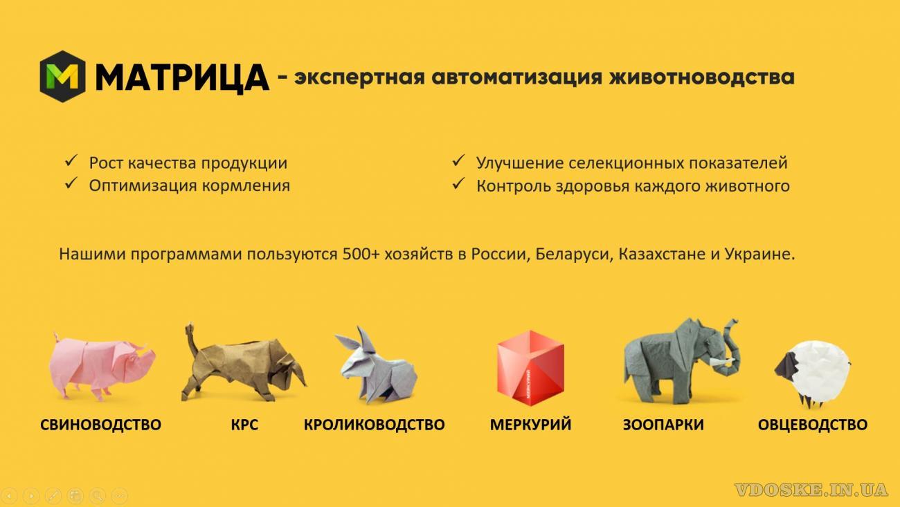 Программы для автоматизации учёта в животноводстве (2)