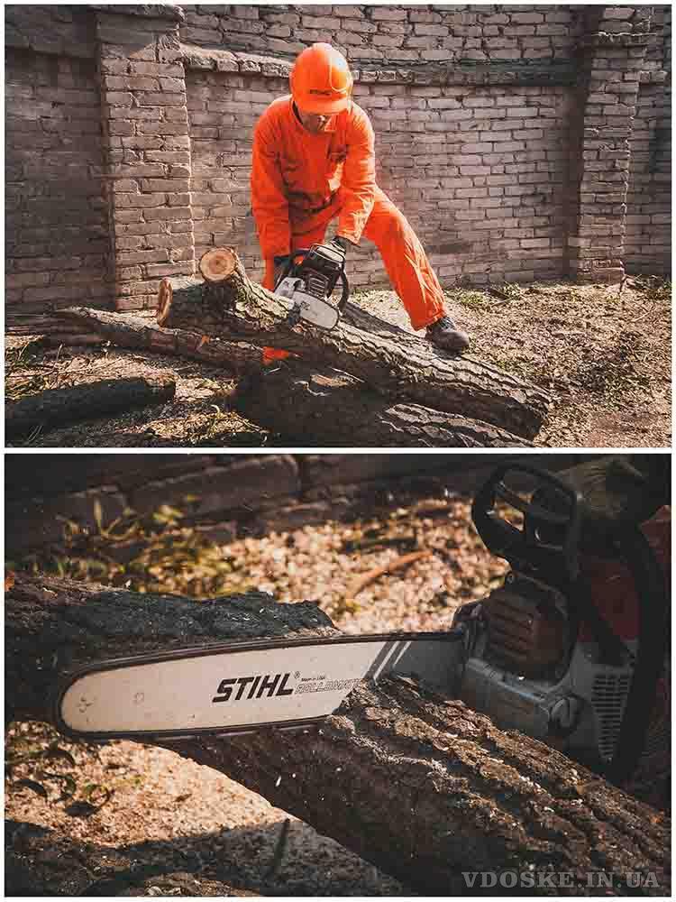 Обрезка деревьев в Харькове (3)