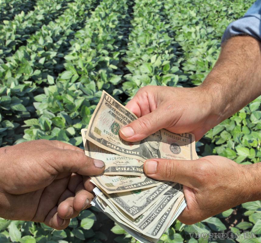 Финансовая помощь через международный кредит (4)
