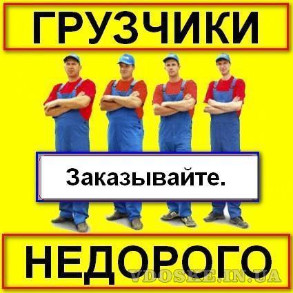 Услуги опытных грузчиков. (5)