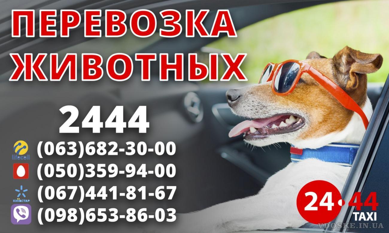 Водитель такси со своим авто Быстрая регистрация Стабильный заработок (6)
