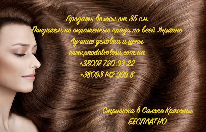 Продать волосы в Киеве куплю волосы в Киеве дорого по вашей цене