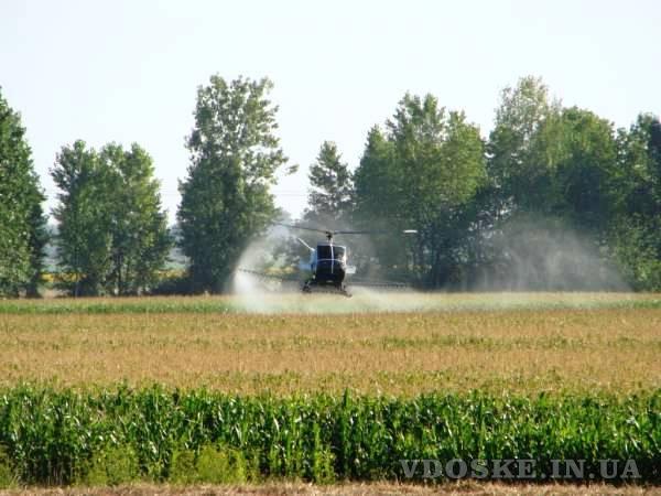 Авіаобробка ріпаку пшениці сої кукурудзи гвинтокрилом дельтапланом самольотом