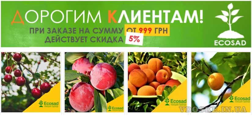 Продажа саженцев по всей Украине с доставкой от Экосад