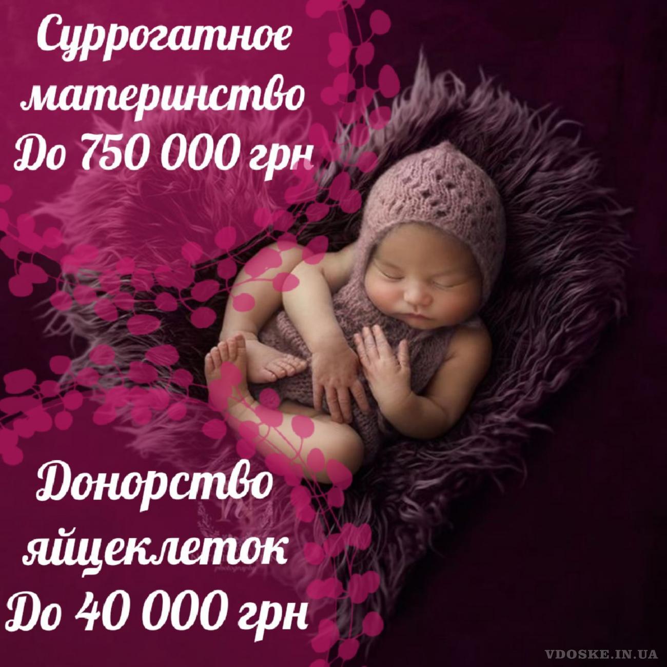 Суррогатное материнство. Донорство яйцеклеток. Центр Счастье материнства