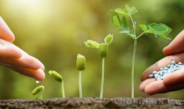 Стимуляторы роста.Агро центр B&SProduct.Товары для растениеводства
