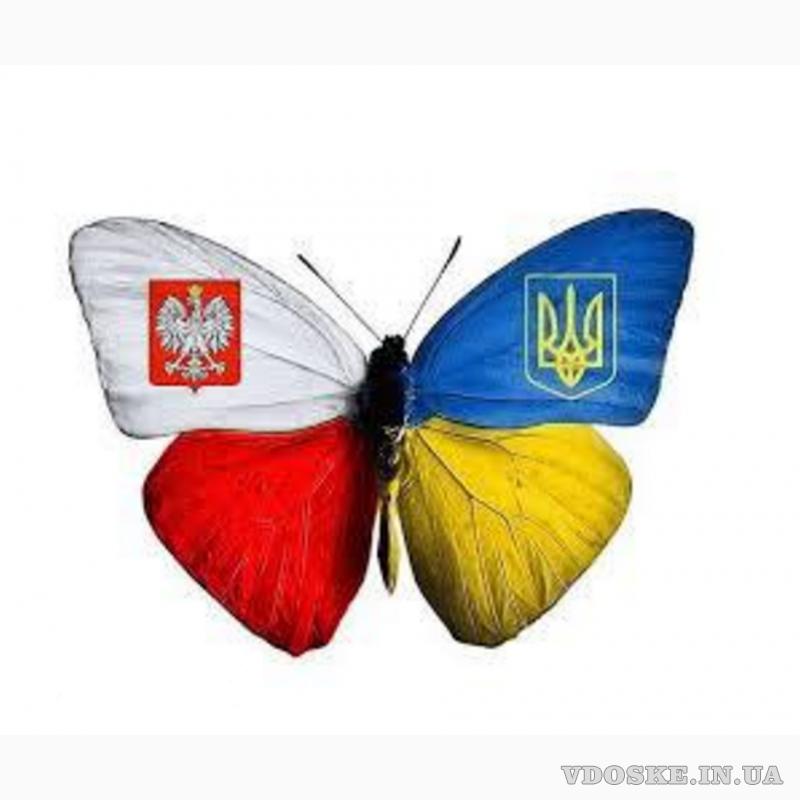 Вакансия СОРТУВАННЯ саджанців клубники в Польщi