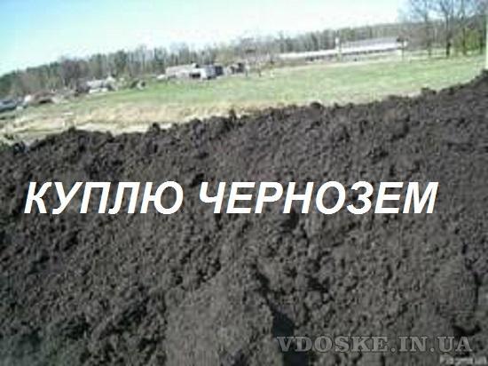 Приму/Куплю Чернозем. Гостомель (Киевская область)