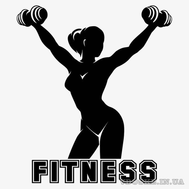 THE FITNESS – товары для фитнеса, воркаута, йоги
