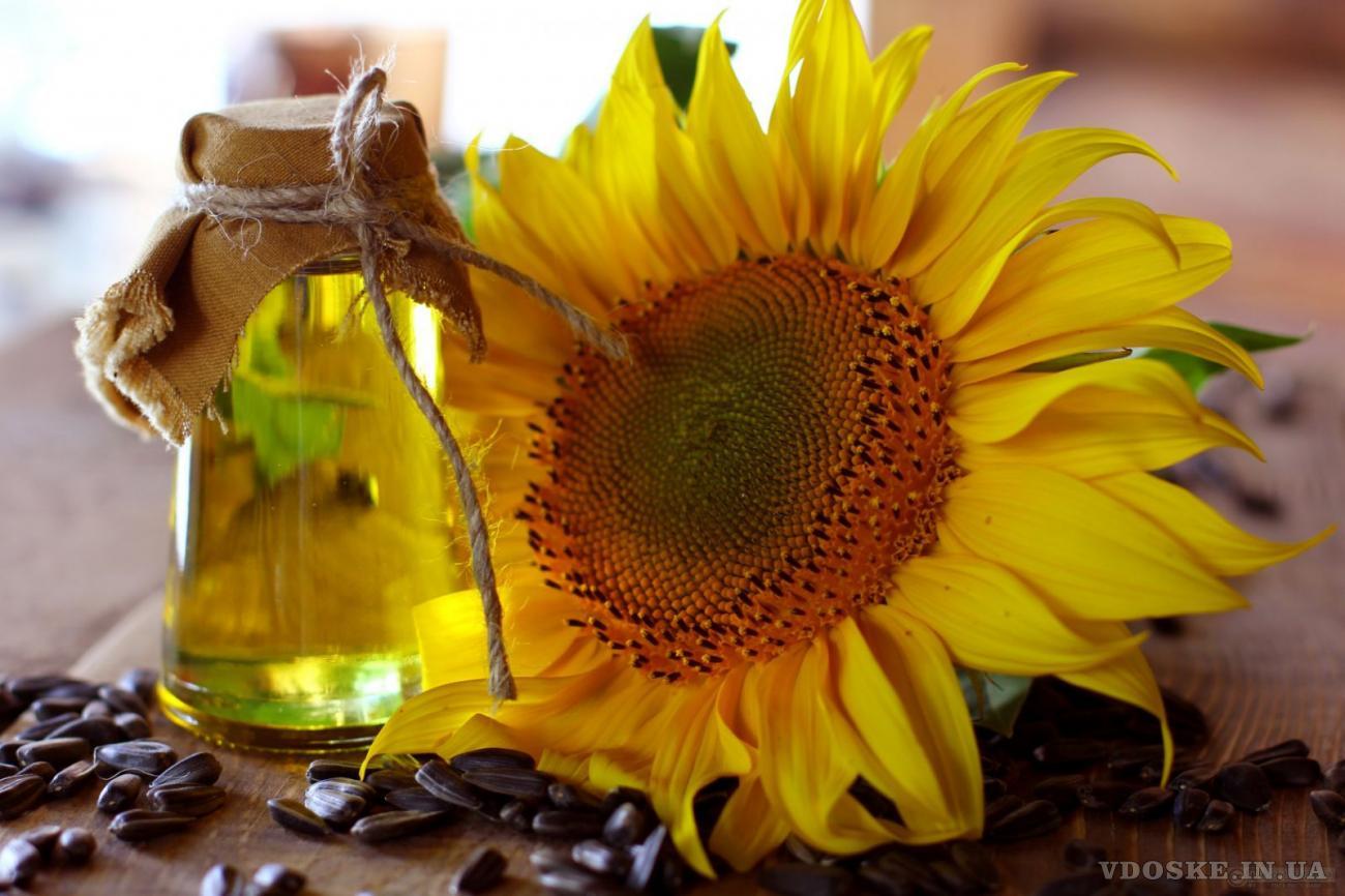 Масло растительное купить в Украине