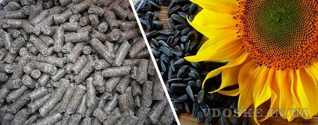 Подсолнечный шрот, зерновые, мука закупить в Украине