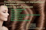 Продать не окрашенные славянские волосы от 35 см куплю волосы  в Харькове 0977209322