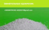 Аммония сульфат, нпк, карбамид, возможен экспорт.