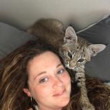 Продам красивых котят РЫСИ!!!!!