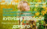 Скупка волос в Киеве. Куплю волосы дорого без посредников. Салон в центре или минский массив