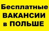 Легальная работа в Польше | Заработок от 25000 грн | Вакансии Бесплатно!
