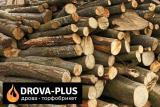 Дрова метровий кругляк Луцьк – ціна купити недорого Drova-plus