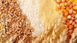 Закупить Масла всех видов || Бразильского производства