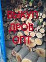 Закупаем дрова.Только опт