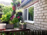 Продам дом в Буче c ремонтом в современном стиле.