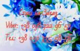Спирт пищевой Альфа 96.3 от 5л