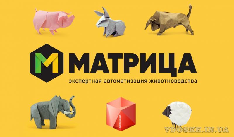 ООО «МАТРИЦА»